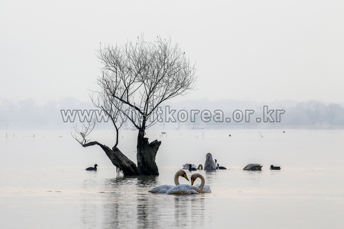 Junam Reservoir  (A Lake Where Love Grows )