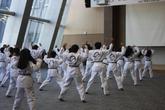 Taekwondo-Traditional Korean Martial Art