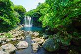 Cheonjiyeon Waterfalls(Jeju Island)