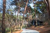 Anmyeondo Recreational Forest