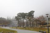 Jeongeupsa Park