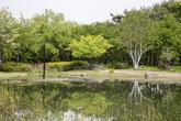 Hanbat Arboretum