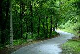 성주산자연휴양림