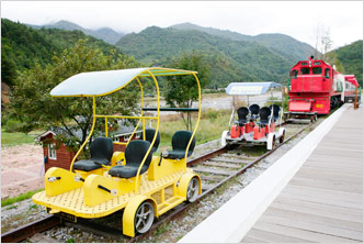 Jeongseon Rail-bike Ride