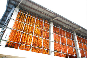 Sangju Gotgam (Dried Persimmons)