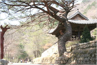 Mungyeongsaejae, the Olden Gateway to Joseons Capital 