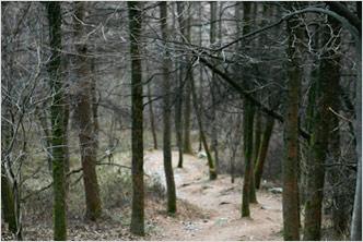 Old Jungnyeong Pass