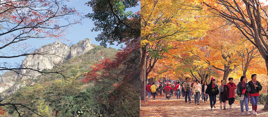 Namwon-si South Korea  city pictures gallery : ... Highlights For The Autumn Season | Official Korea Tourism Organization