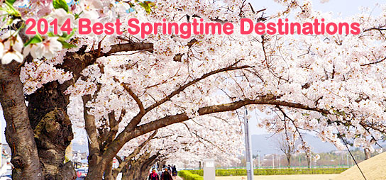 2014 Best Springtime Destinations