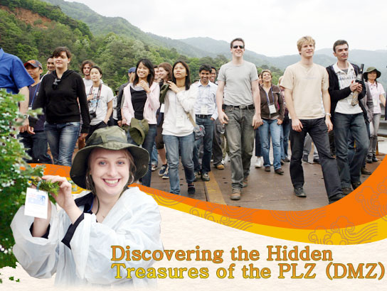 Discovering the Hidden Treasures of the PLZ (DMZ)