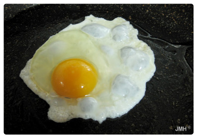 Healthy foods-egg yolks