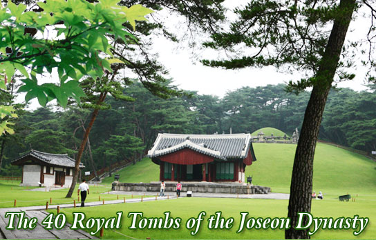 The 40 Royal Tombs of the Joseon Dynasty