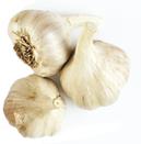 garlic poto