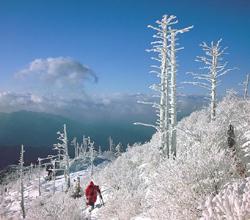 Mt. Jirisan National Park