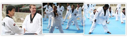 Taekwondo Experiential Program