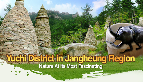 Yuchi District in Jangheung Region – Nature At Its Most Fascinating