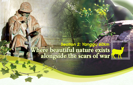 Section 2: Yanggu 60km_Where beautiful nature exists alongside the scars of war
