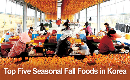 Top Five Seasonal Fall Foods in Korea