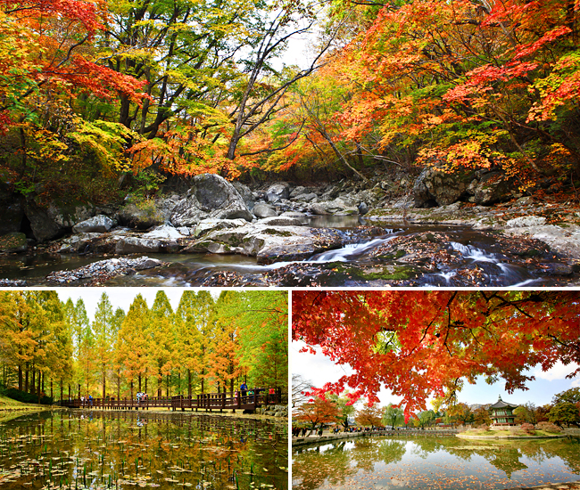 Best Places To Visit During September And October: 2014's Fall Foliage To Start In Late September