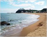 Jeongdongjin Beach (정동진바다)