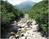 Mureung Valley (무릉계곡)