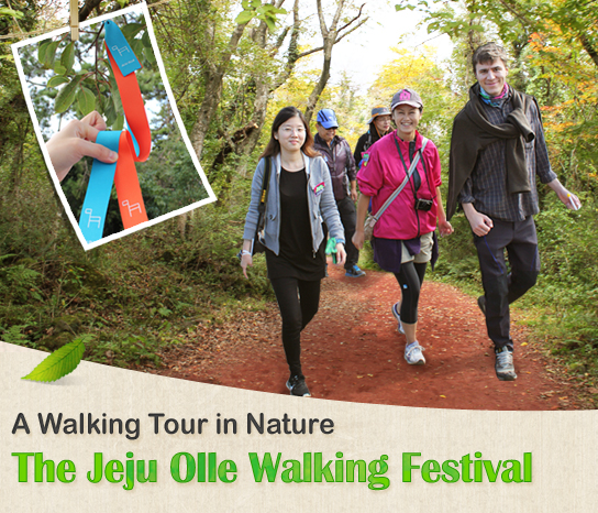 A Walking Tour in Nature The Jeju Olle Walking Festival