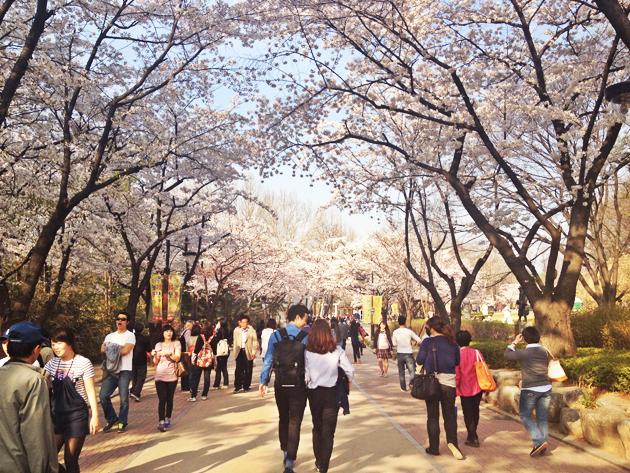 http://tong.visitkorea.or.kr/enu/cms/content/03/1610003_1_6.jpg