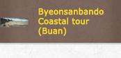 Byeonsanbando Coastal tour (Buan)