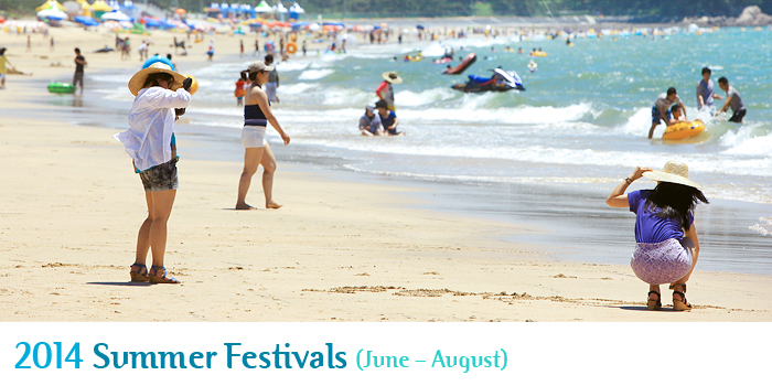 2014 Korean Summer Festivals