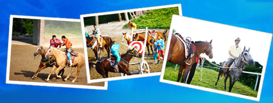There are a total of 3 picture and left two people talk to each other in order from Malta photos, horse, etc., those who speak up on top of the photo, I got on the end of both horses and people photography