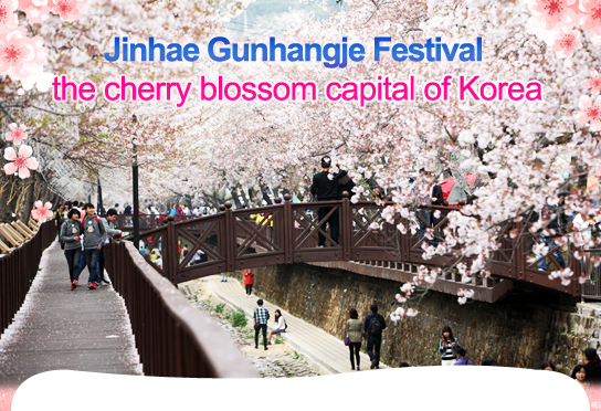 Jinhae Gunhangje Festival the cherry blossom capital of Korea