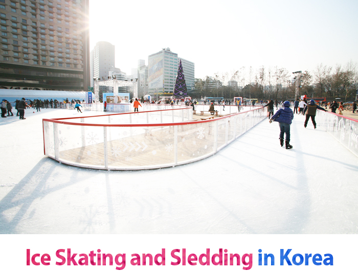 Ice Skating and Sledding in Korea