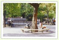 マロニエ公園で休憩
