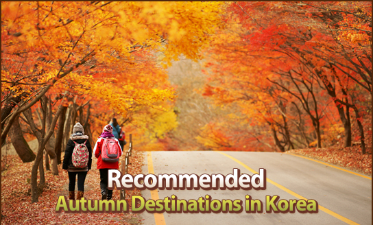 Recommended Autumn Destinations in Korea