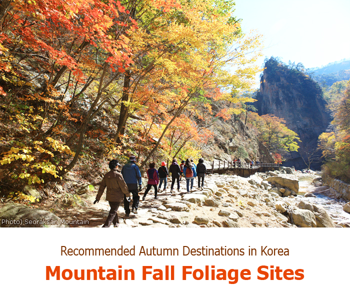 Recommended Autumn Destinations in Korea_Mountain Fall Foliage Sites