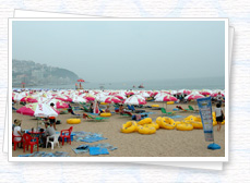 Haeundae Beach lined wall-to-wall sun umbrellas on the sand photo