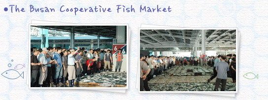 The Busan Cooperative Fish Market