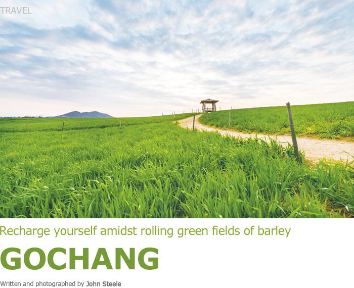 Recharge yourself amidst rolling green fields of barley GOCHANG