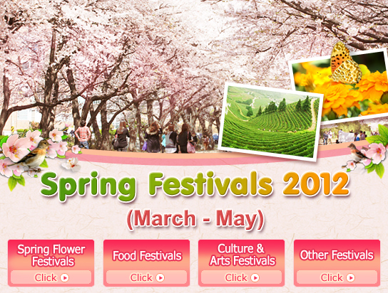 Cherry blossoms apricot flowers and cornus fruit trees bloom from the