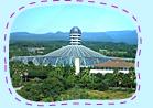 Theme park appearance photos