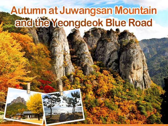 Autumn at Juwangsan Mountain and the Yeongdeok Blue Road
