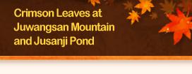 Crimson Leaves at Juwangsan Mountain and Jusanji Pond