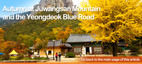 Autumn at Juwangsan Mountain and the Yeongdeok Blue Road
