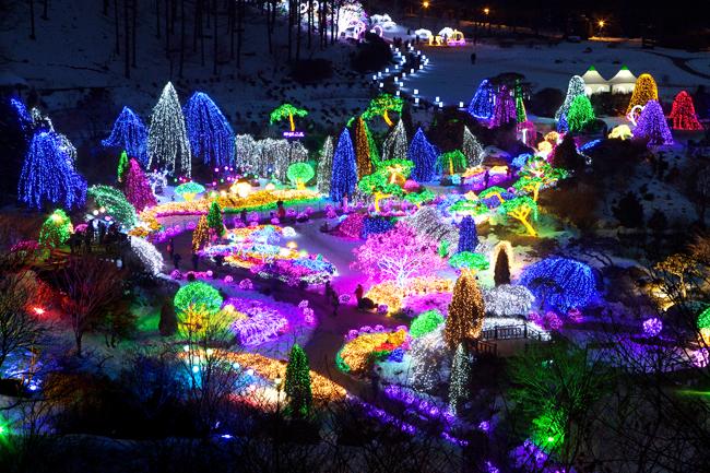 ?Millions of light bulbs illuminate The Garden of Morning Calm at night & The Garden of Morning Calmu0027s Lighting Festival starts Dec 6 ... azcodes.com