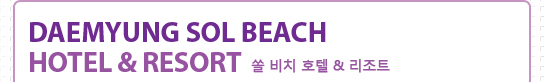 Daemyung Sol Beach Hotel & Resort쏠 비치 호텔 & 리조트