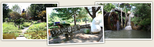 Chuncheon places associated with the photo. There are a total of three images, the order from the left pond meadow and wood photo, NAMI winter Sonata was the first kiss in place photo, overshot the photo.