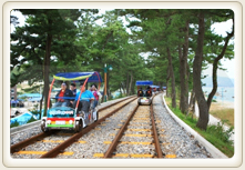 The beach features a railway line through the trees above Samcheok running Ocean Railbike