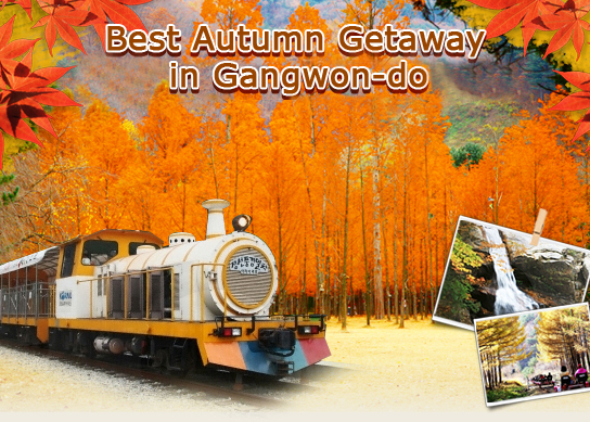 Best Autumn Getaway in Gangwon-do