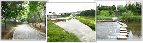 Yangjae Citizen's Forest to dobo, Yangjae Citizen's Forest a pond, Yangjae Citizen's Forest photo stream on stepping-stones