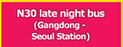N30 late night bus(Gangdong - Seoul Station)